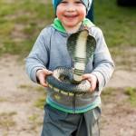 Noah erschreckt alles und jeden mit einer Schlange.