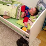 Cooper macht mit beim Mittagsschlaf.