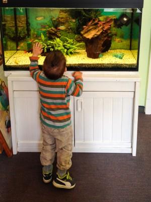 Liam ist ein großer Fische-Fan