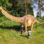 Bei uns im Wald hat sich eine Dinoausstellung eingenistet.