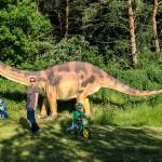 Im Juni waren die Dinos in Herrnburg