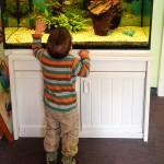U7 und U7a. Fische sind ein Dauerrenner bei Liam.