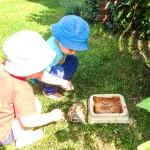 Gepanzerter Besuch in unserem Garten