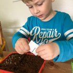 Ganz konzentriert pflanzt Noah sein kleines Gärtchen.