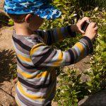 Noah darf Fotos mit der kleinen Knippse machen.