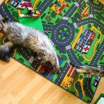 Cooper mag Liams Spielteppich